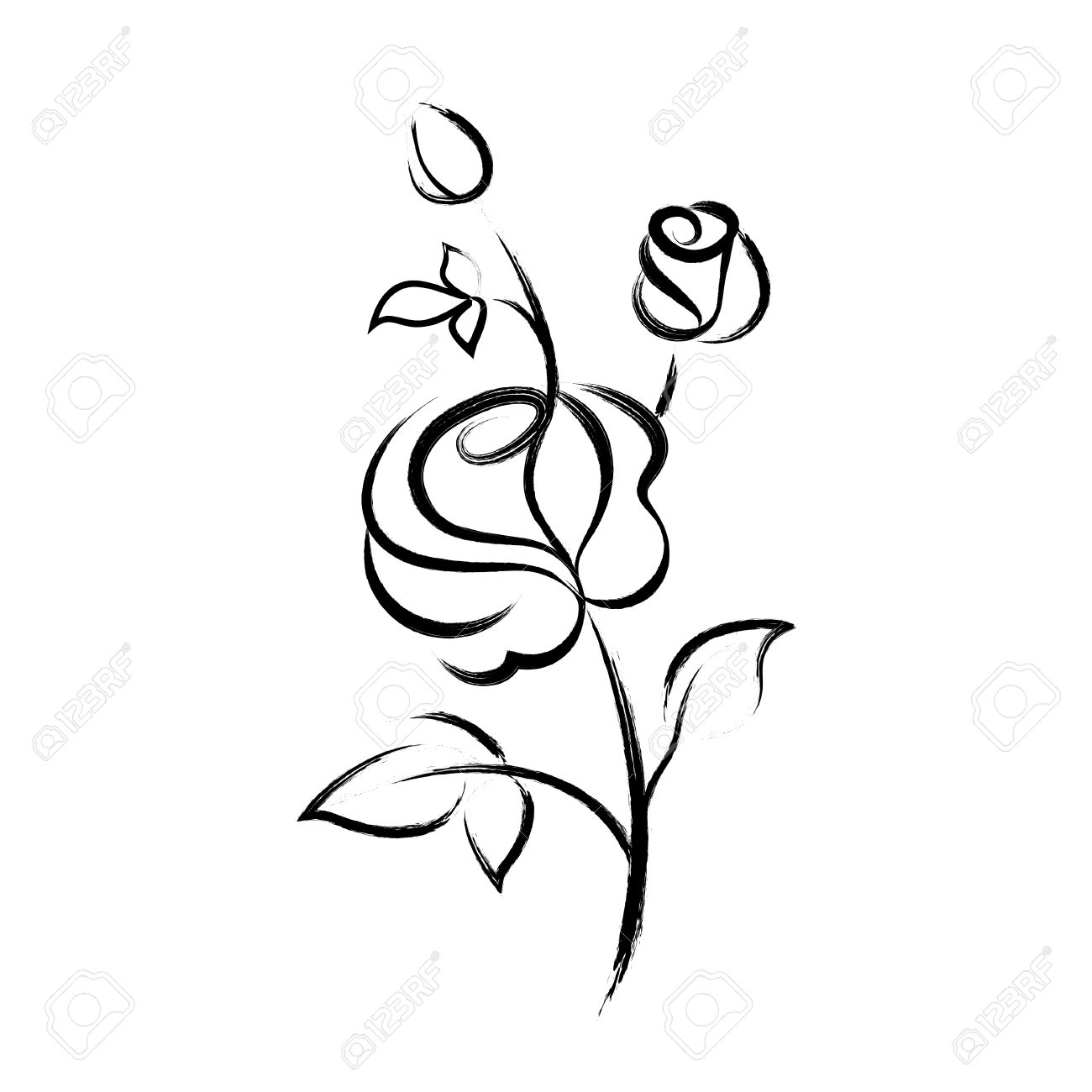 Black Hand Drawn Rose Isolated On White Background Royalty Free ...