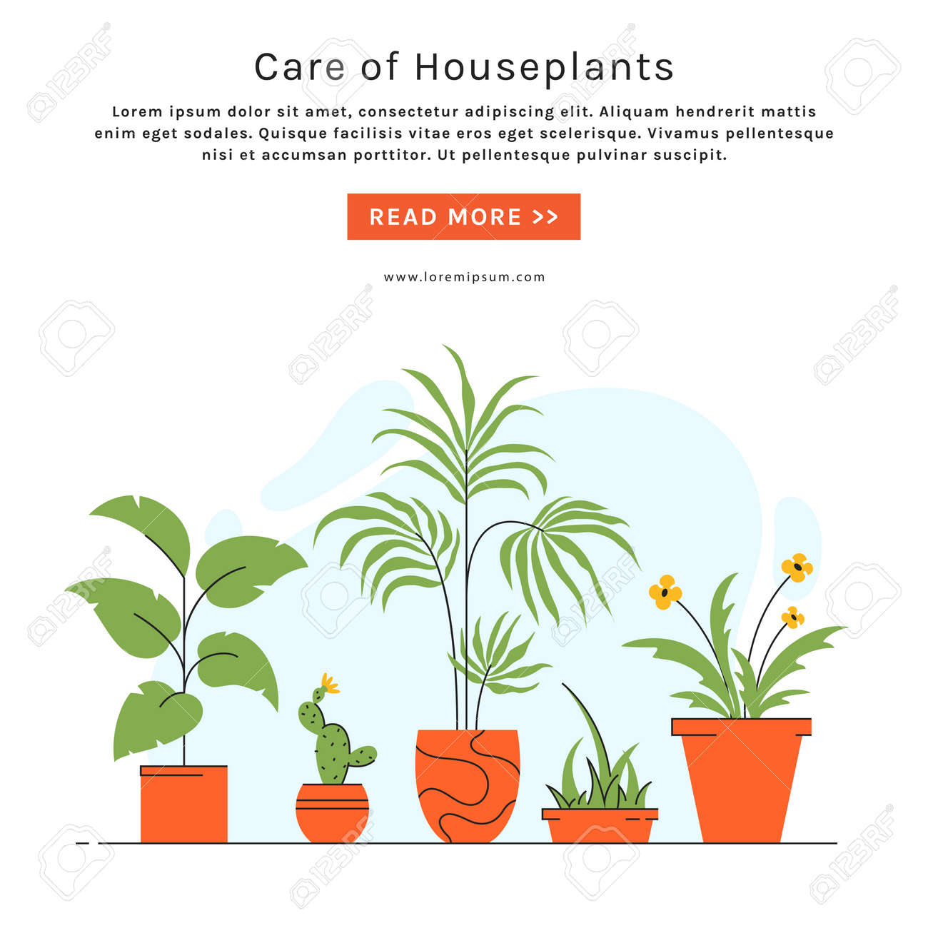 Houseplant care banner with place for text. Indoor plants in pots. Vector illustration in trendy style. - 158641222