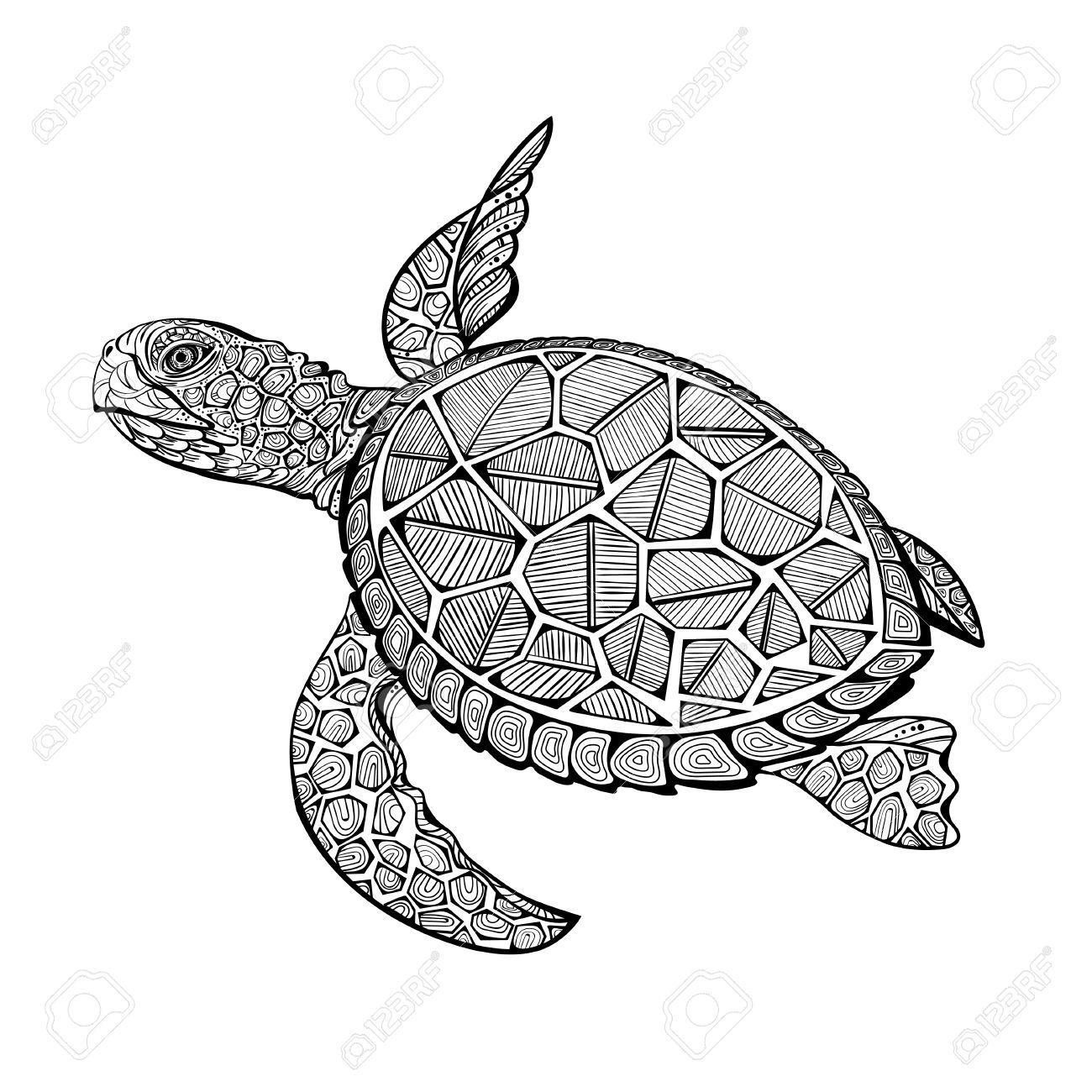 Illustration Of Sea Turtle For Coloring Book Pages For Kids And