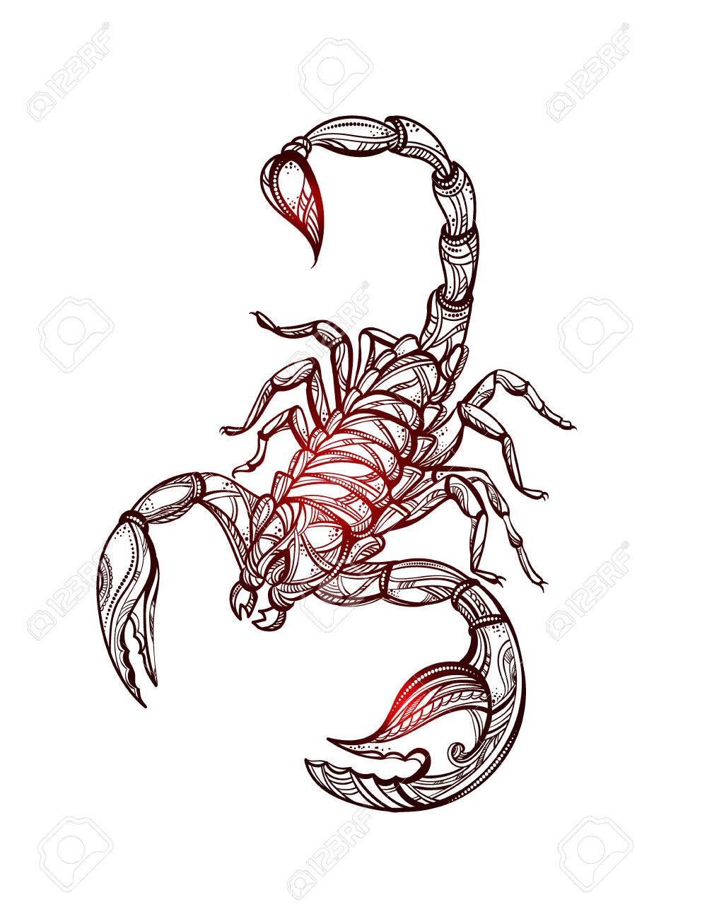 Escorpion Tatuaje vector escorpión tatuaje ilustraciones vectoriales, clip art