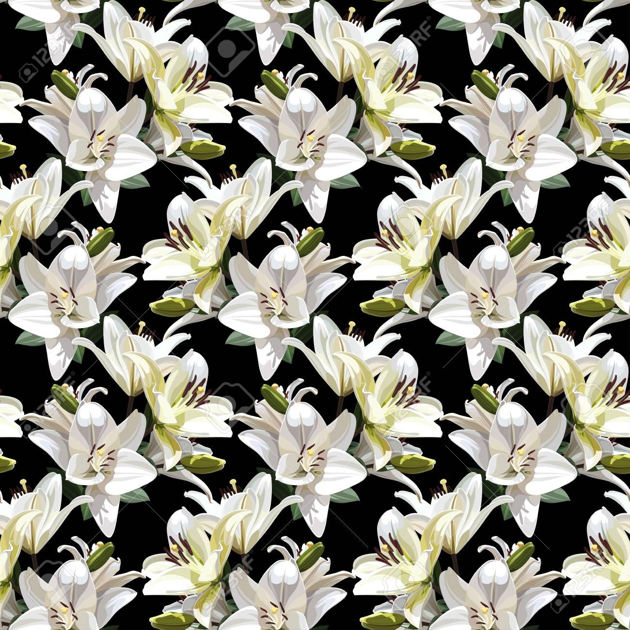 White flowers of lily madonna lily seamless floral pattern white flowers of lily madonna lily seamless floral pattern on black background izmirmasajfo