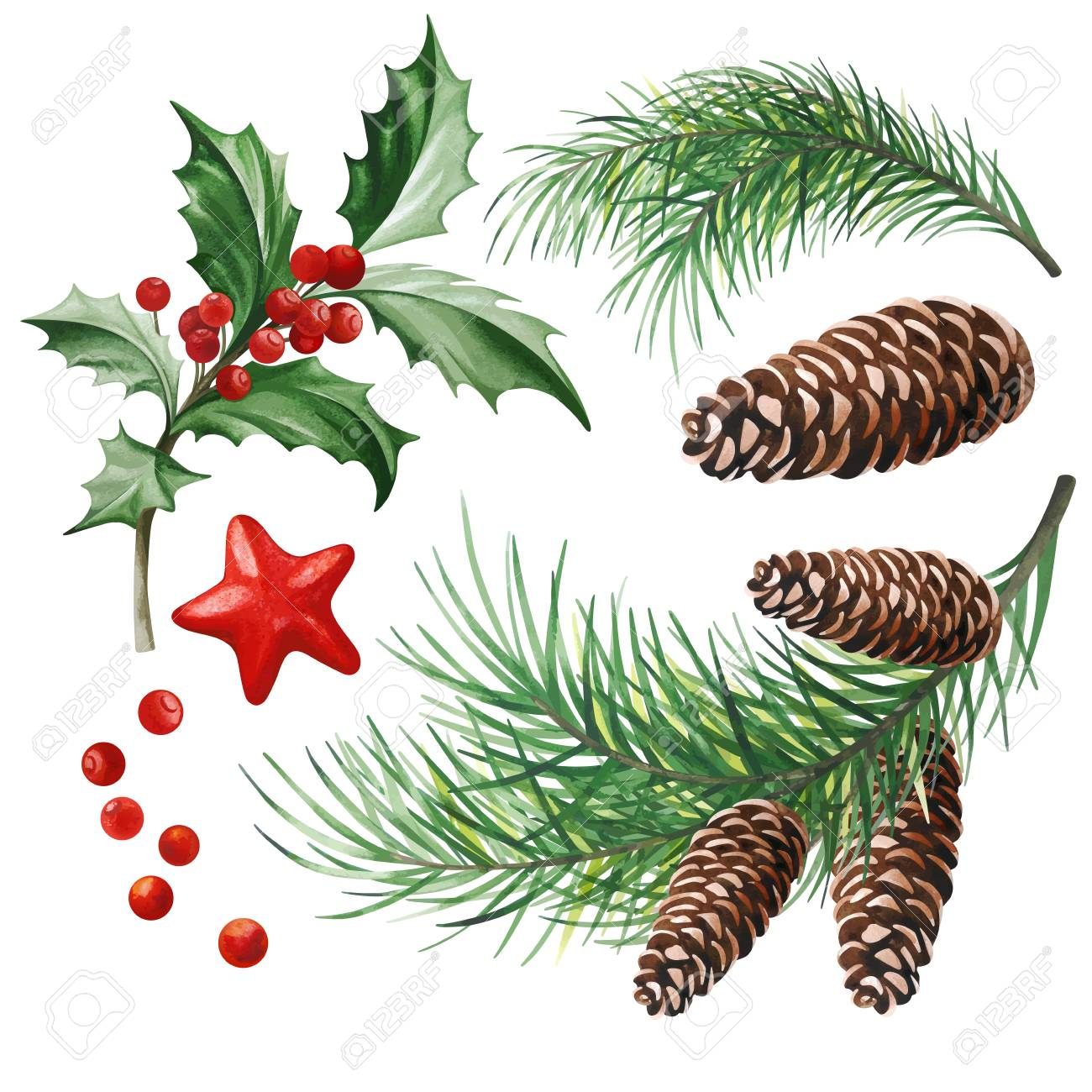 Christmas Symbols Holly Leaves Christmas Tree With Cones And