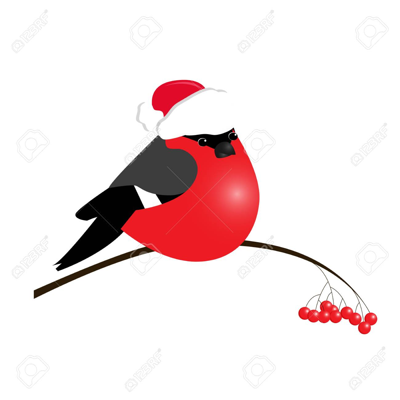 bullfinch isolated on white background. Sample of poster, party holiday invitation, festive banner, card. Vector cartoon llustration. - 127025052