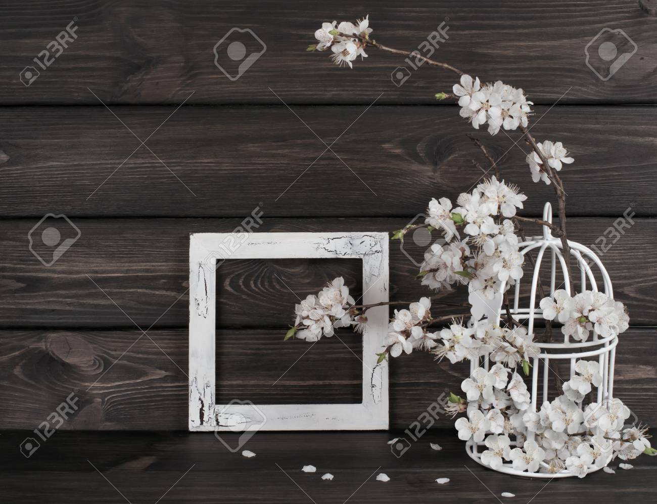 Apricot Flowers In Birdcage And Photo Frame In Shabby Chic Style ...
