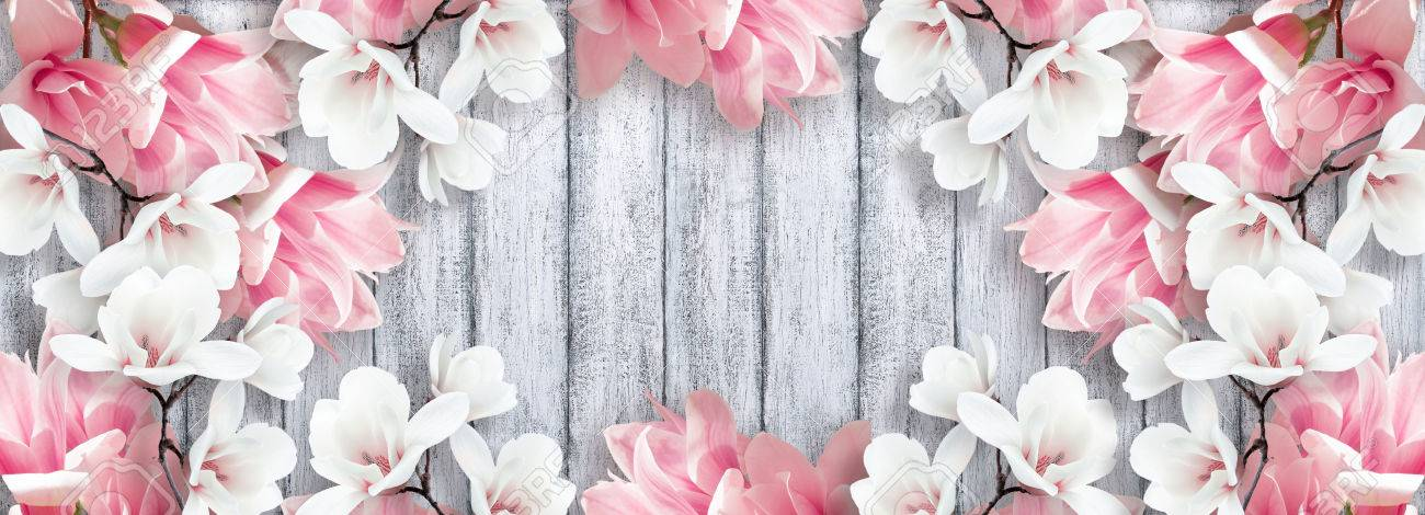 Banner With Magnolia Flowers And Place For Your Text On Background Of Shabby Wooden Planks In