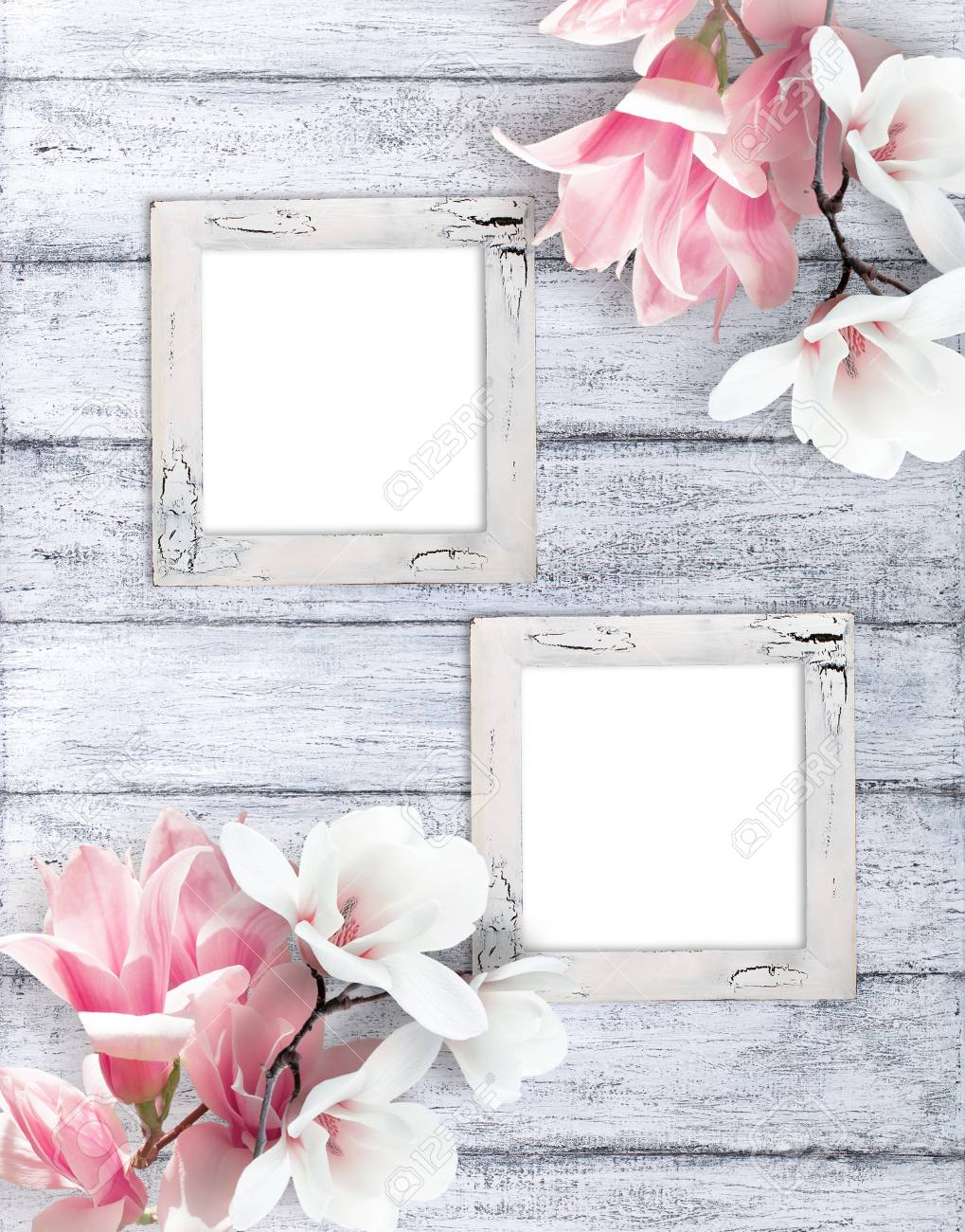 Two Retro Empty Photo Frames With Magnolia Flowers On Background Stock Photo Picture And Royalty Free Image Image 84610215