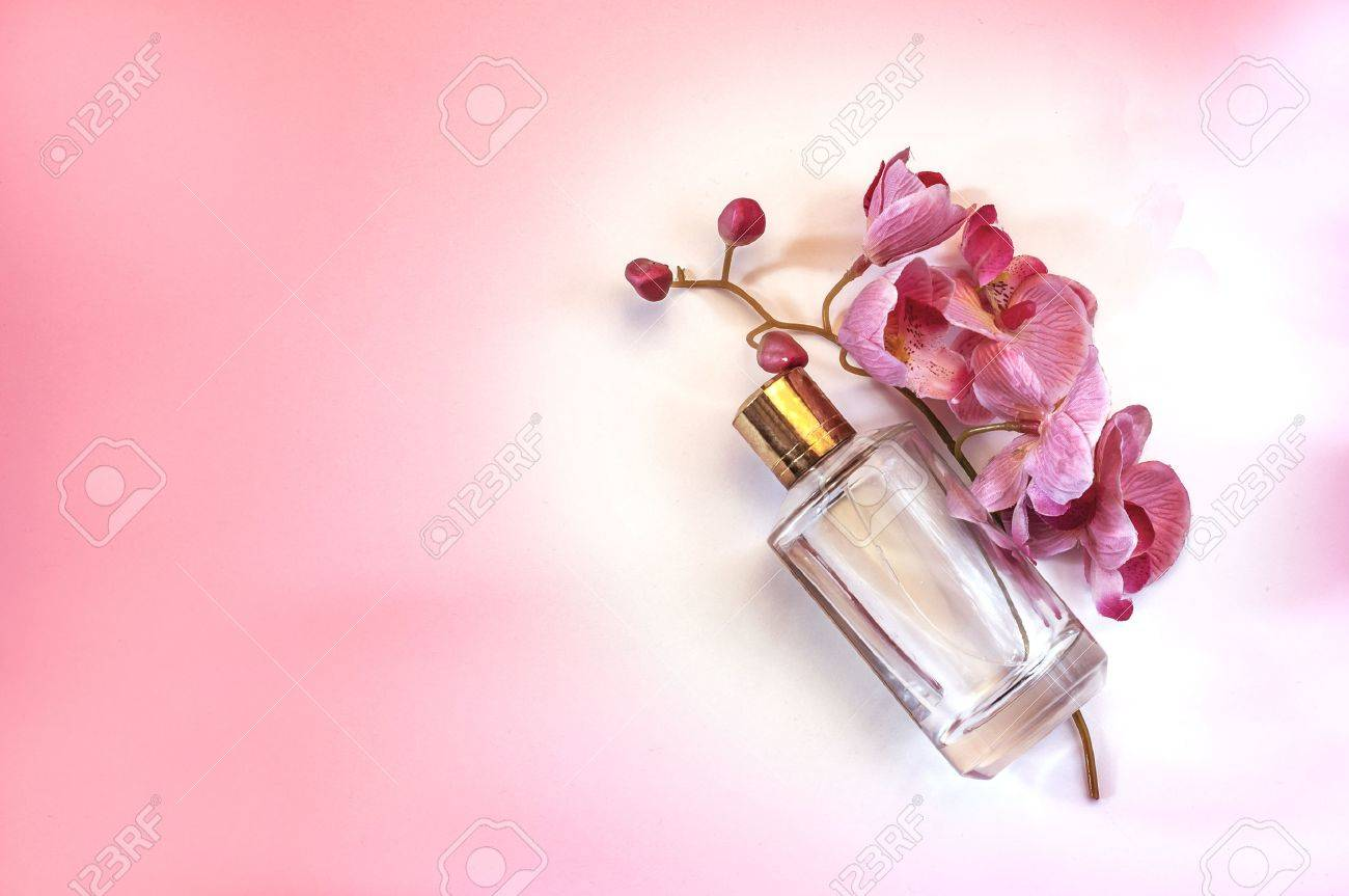 Bottle of womens perfume and a delicate orchid flower on a pink bottle of womens perfume and a delicate orchid flower on a pink background stock photo mightylinksfo