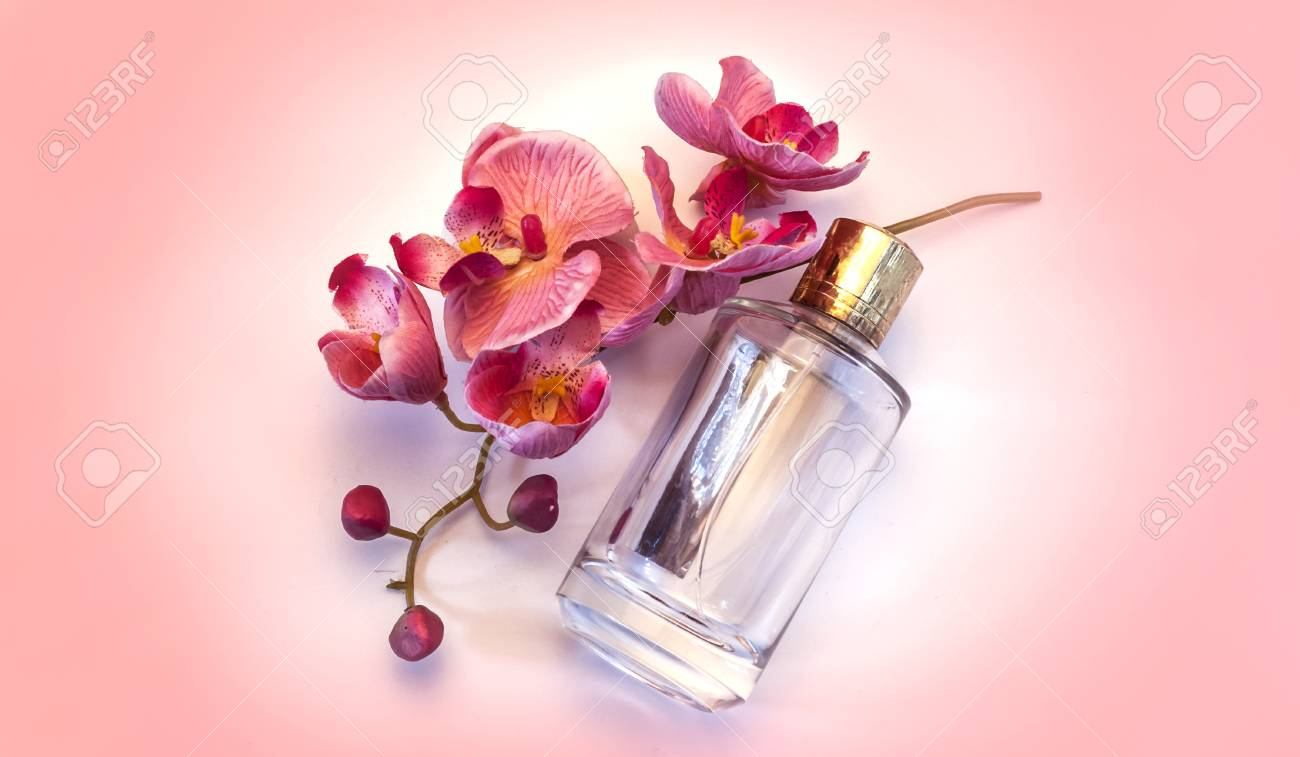 Bottle Of Womens Perfume And A Delicate Orchid Flower On A Pink