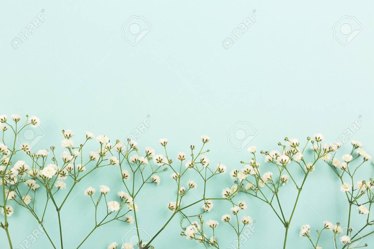 Spring Background Made With Flowers On Aqua Or Mint Green