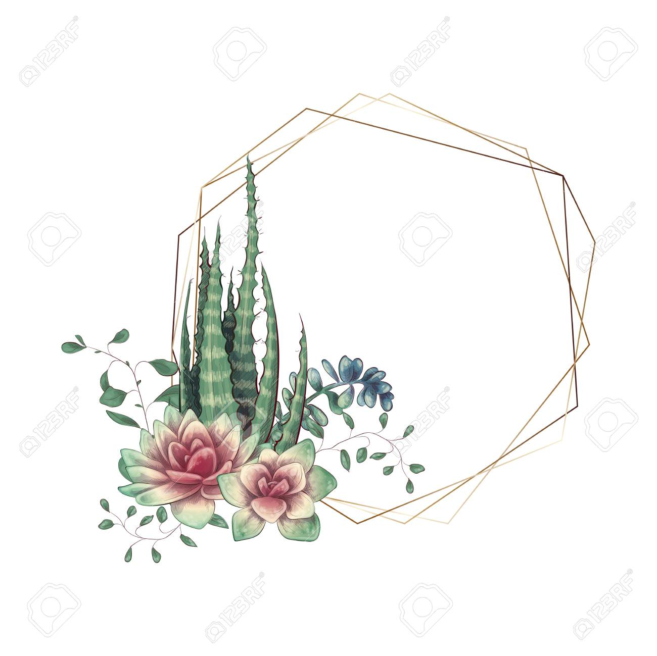 Wedding Frame With Succulent And Cacti Vector Illustration Royalty Free Cliparts Vectors And Stock Illustration Image 112917627