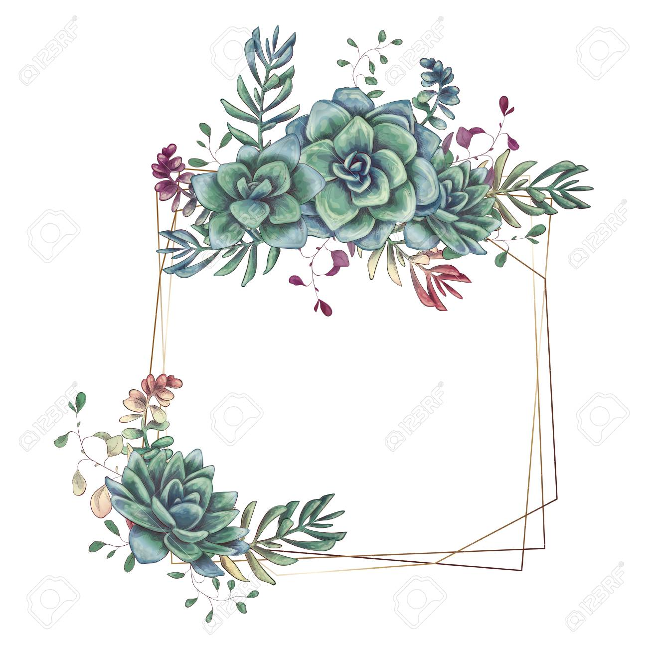Wedding Photo Frames.Festive Wedding Frames With Colorful Succulents Beautiful Plants