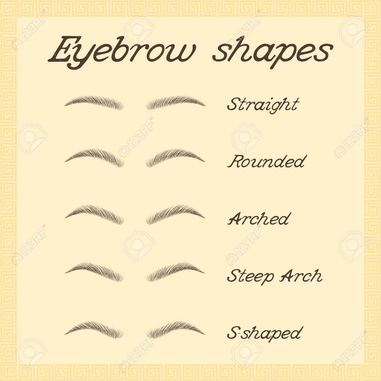 Eyebrow shapes  Various types of eyebrows  Vector