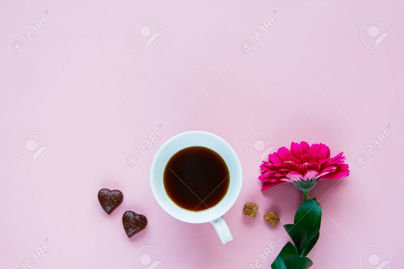 Pink Gerbera Flower, Coffee Cup And Chocolate On Pink Background ...