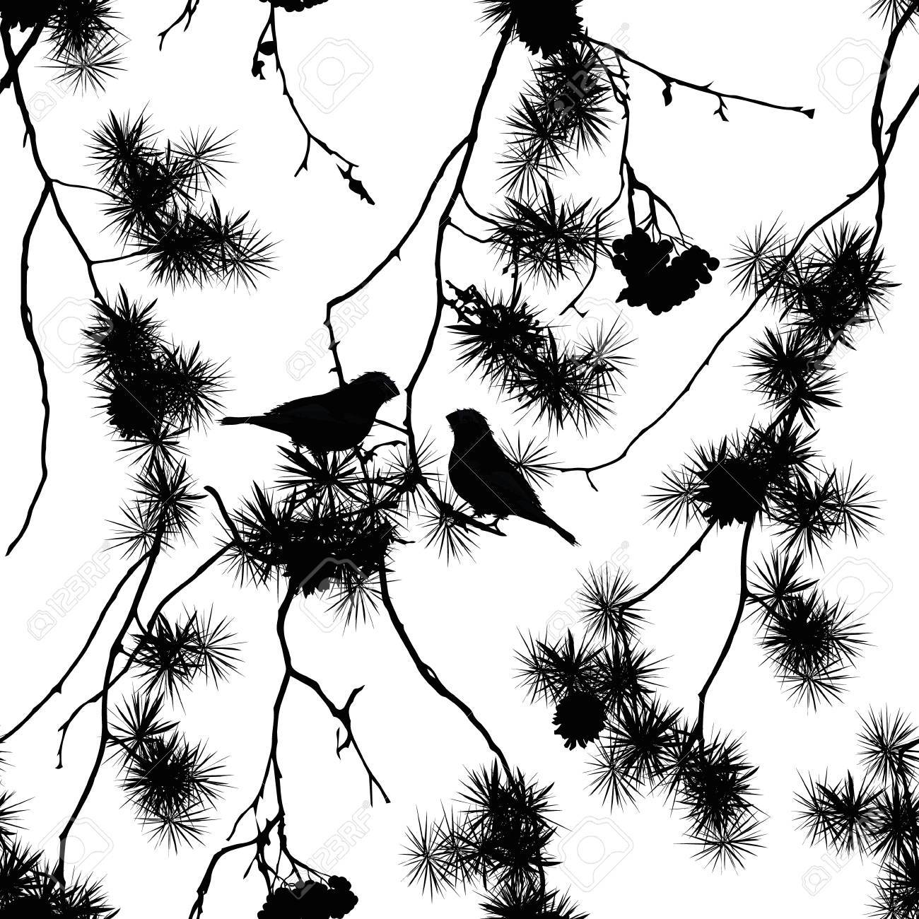 Birds on pine branches seamless print - 33744123