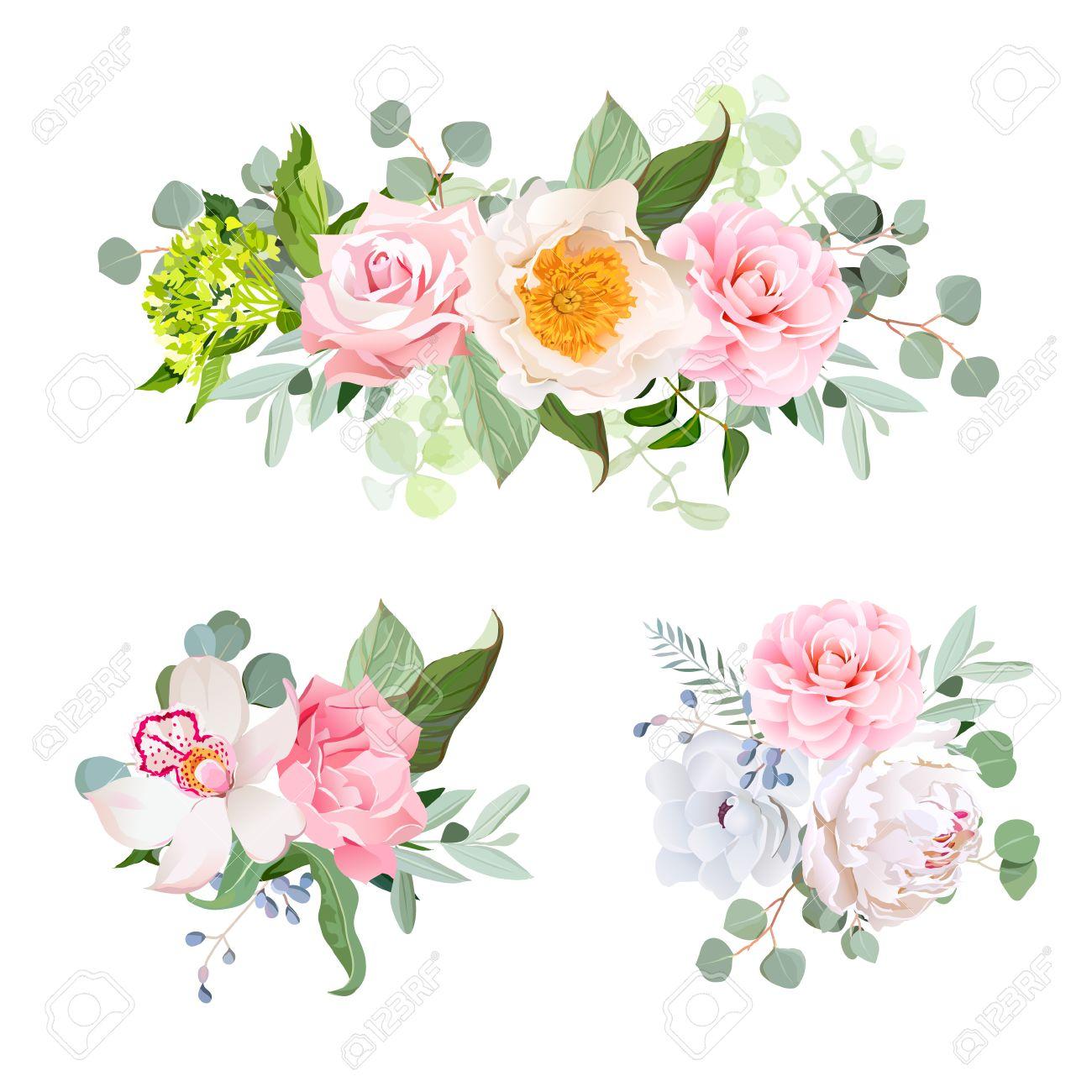 Divers Bouquets De Fleurs Elegant Jeu De Dessin Vectoriel Hydrangea