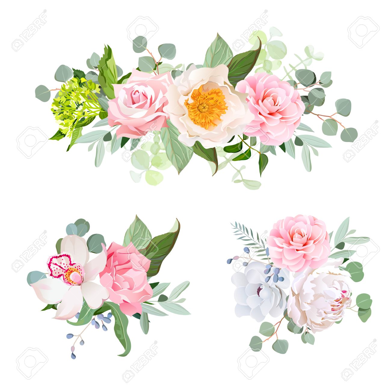 Stylish Various Flowers Bouquets Vector Design Set. Green Hydrangea ...