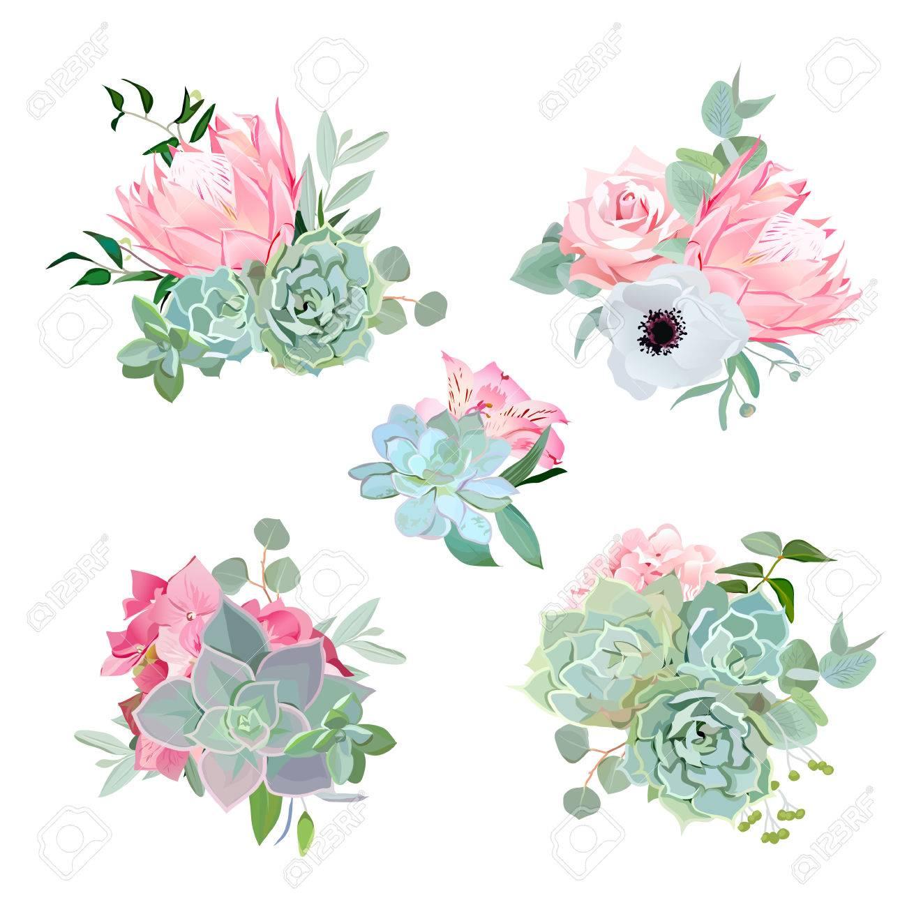 Pequenos Ramos De Flores Elegantes De Plantas Suculentas Protea