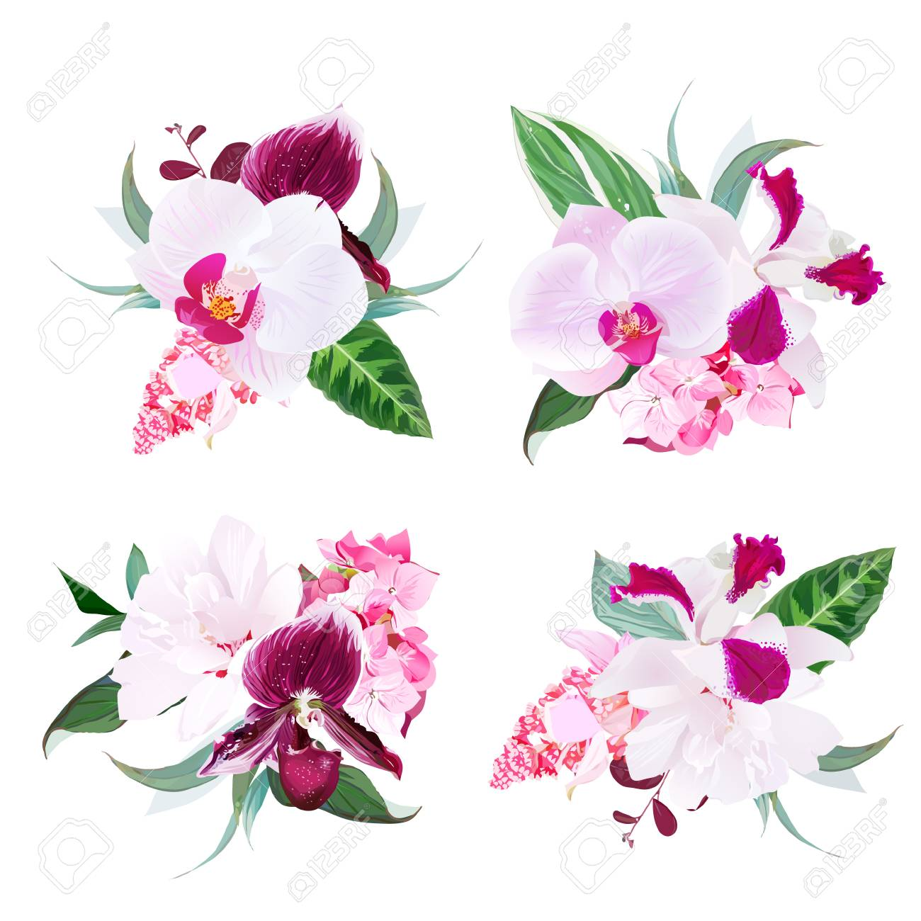 Exotic tropical floral bouquets arranged from singapore orchid exotic tropical floral bouquets arranged from singapore orchid f stock vector 79020454 izmirmasajfo