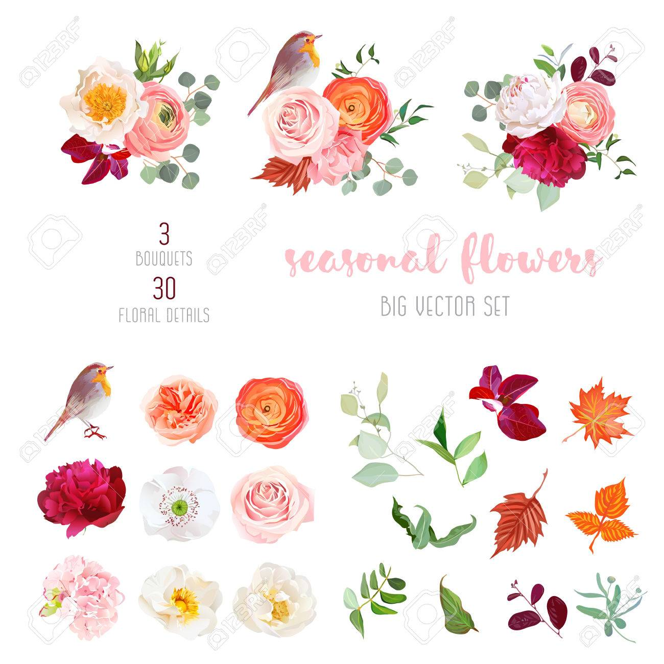 Mix of seasonal plants anf flowers big vector collection - 81715731