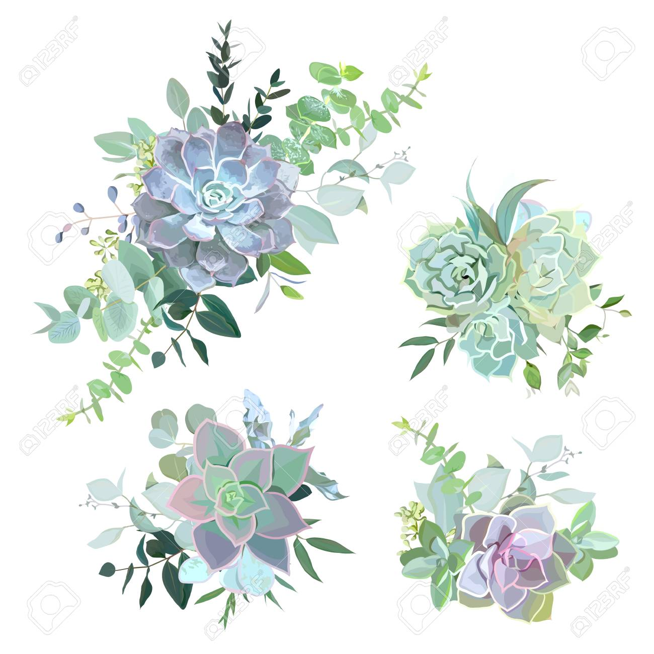 Green Colorful Succulent Bouquets Vector Design Objects Stock Photo Picture And Royalty Free Image Image 90593012