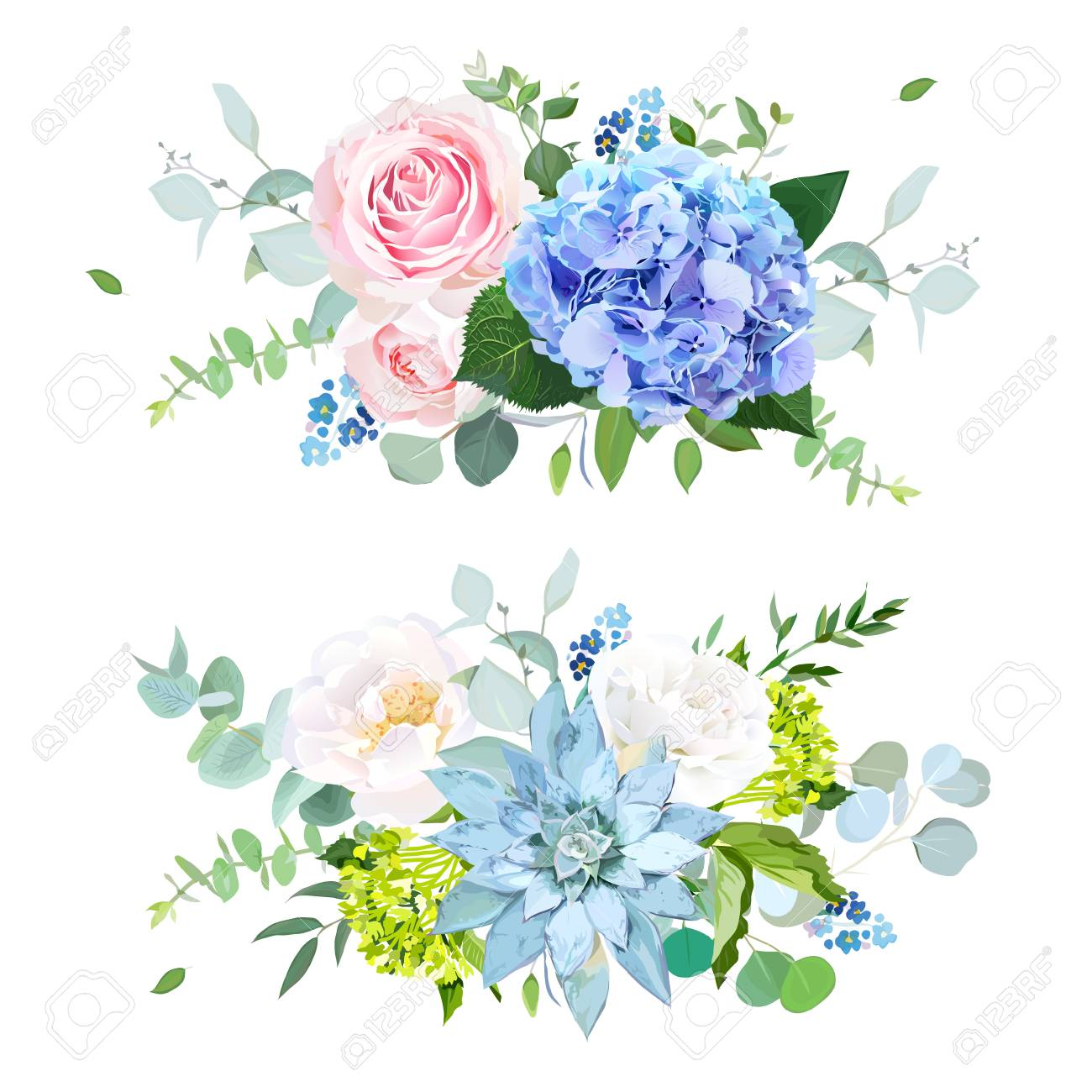 Light Blue Green Hydrangea Pink White Rose Succulent Forget Royalty Free Cliparts Vectors And Stock Illustration Image 114746045