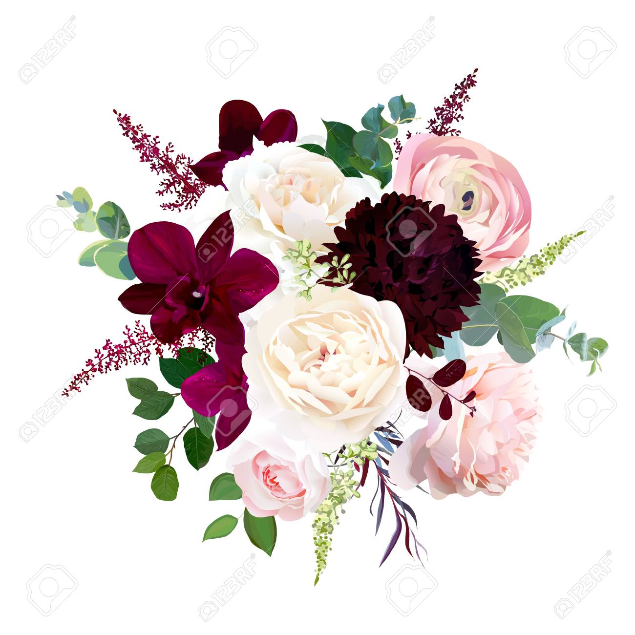Luxury fall flowers vector bouquet. Dark orchid, garden rose, burgundy red dahlia, ranunculus, astilbe, agonis, seeded eucalyptus and greenery. Autumn wedding bunch of flowers. Isolated and editable. - 110125018