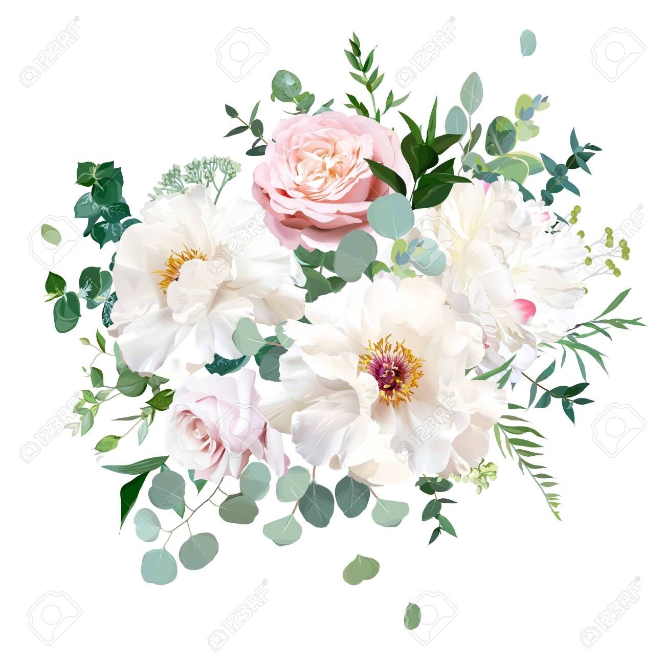 Dusty Pink Blush Rose White And Creamy Woody Peony Flowers Vector Royalty Free Cliparts Vectors And Stock Illustration Image 136411657