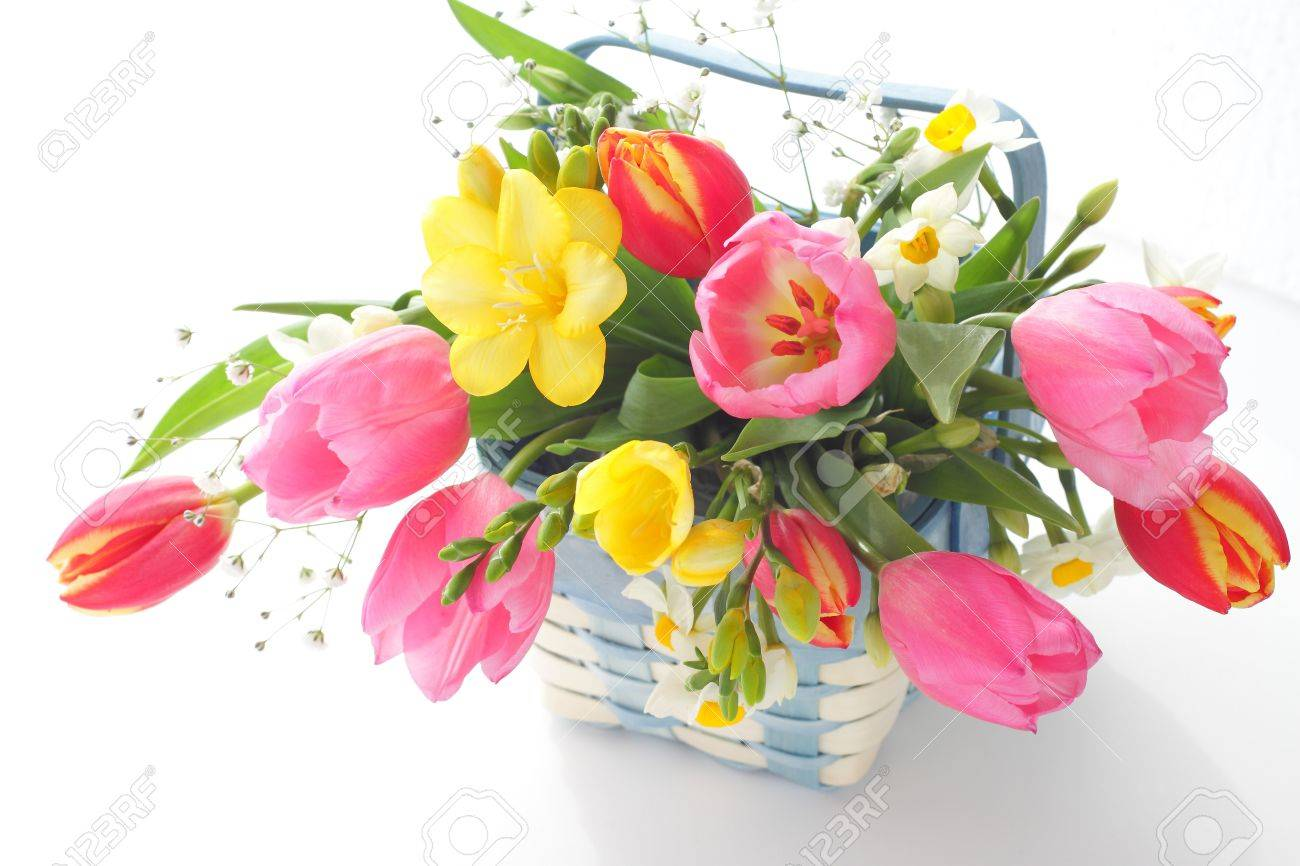 Spring flowers in basket isolated on white Stock Photo - 17888562