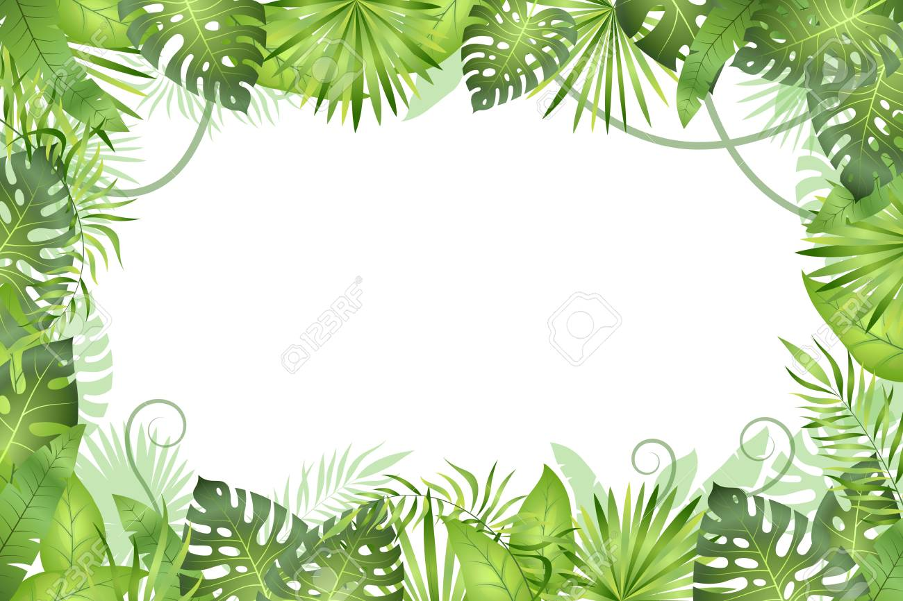 Jungle background. Tropical leaves frame. Rainforest foliage plants, green grass trees. Paradise african wildlife jungle vector frame - 116391588