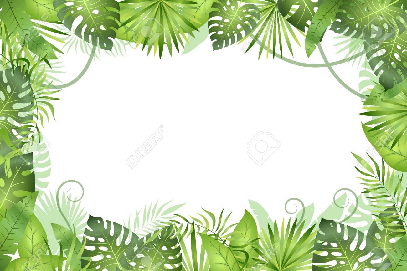 Transparent Forest Background Png - Transparent Jungle Background Png , Free  Transparent Clipart - ClipartKey