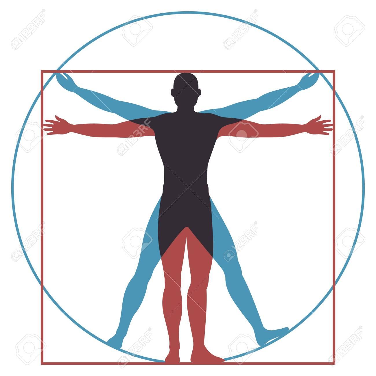 Vitruvian man. Leonardo da vinci human body perfect anatomy proportions in circle and square. Vector renaissance health men silhouette - 126291239