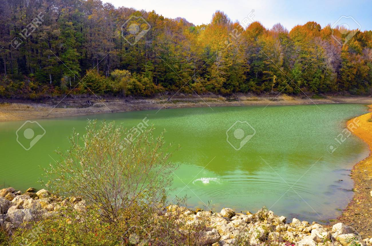 Autumnal scene with yellow, pond and autumn trees. Fall trees reflected in lake. Autumnal scene with yellow, orange and red leaves on trees. - 69107554