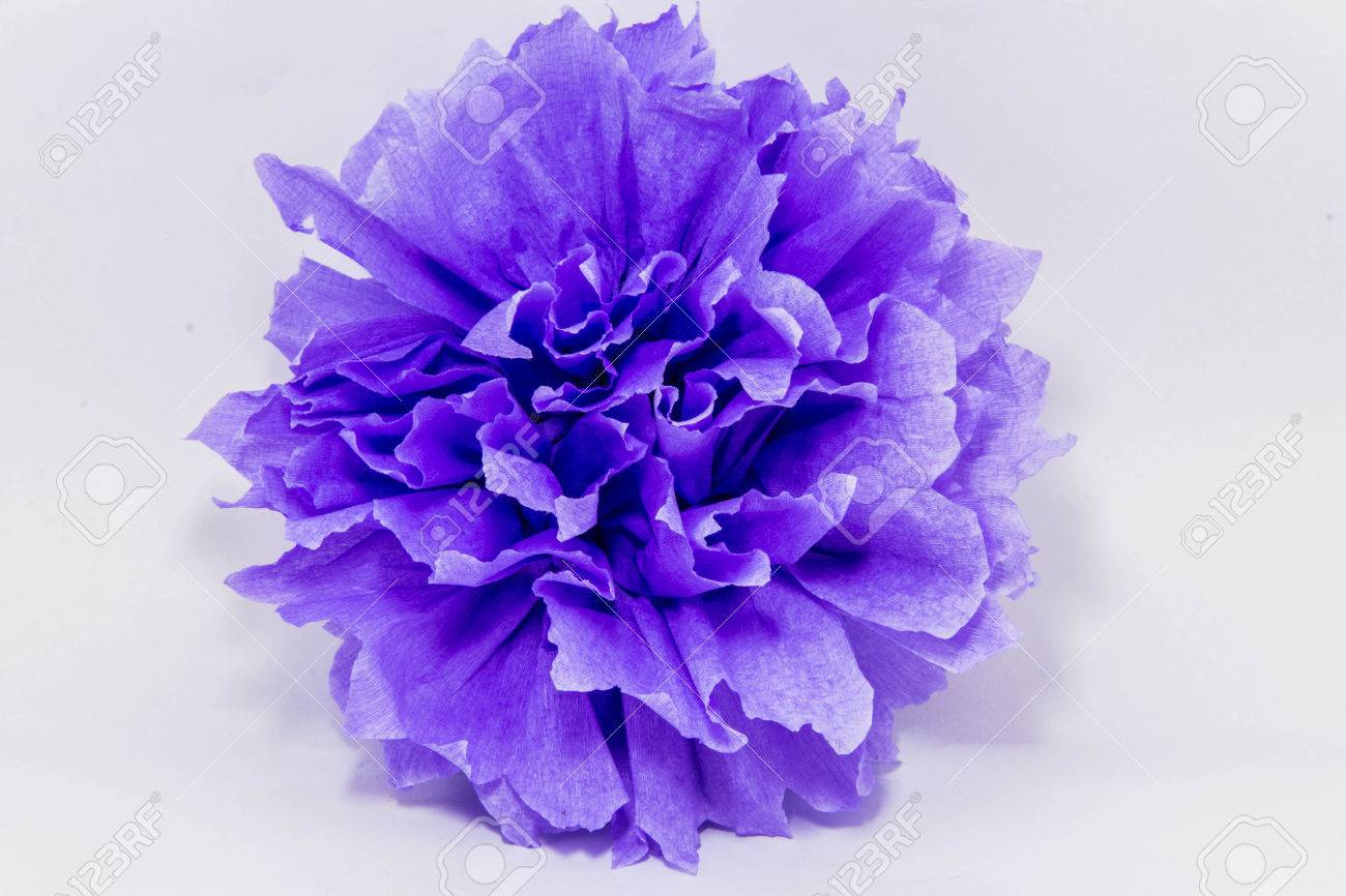 Paper flower pom poms stock photo picture and royalty free image paper flower pom poms stock photo 33524878 mightylinksfo