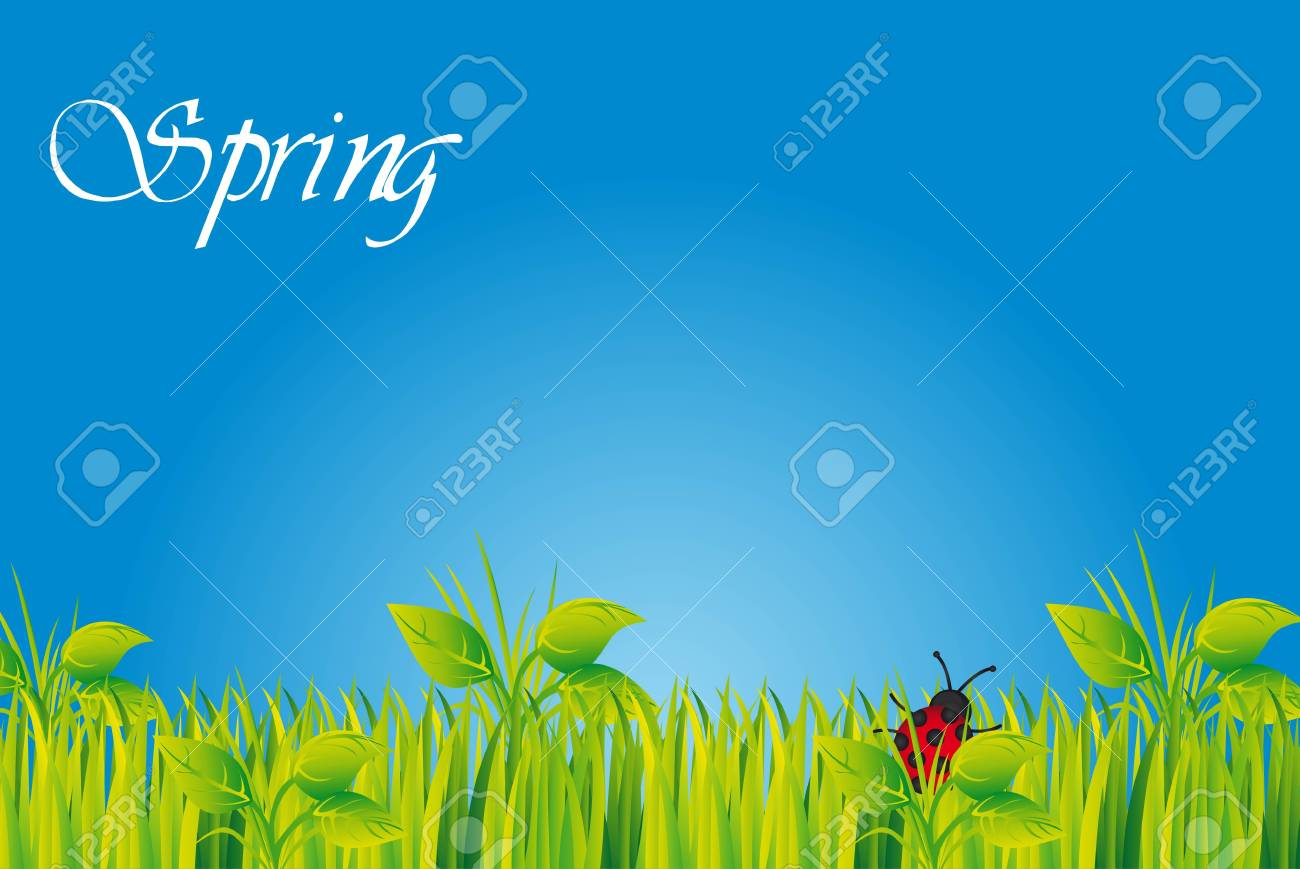 cute landscape with grass and ladybug Stock Vector - 13338198