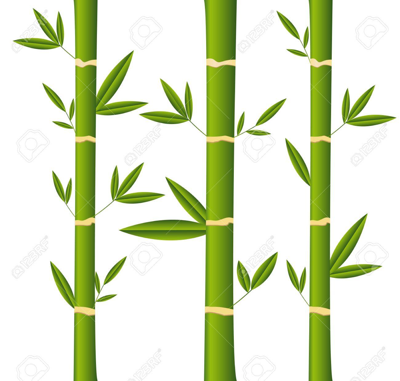 Palos De Bambu Con Hojas Sobre Fondo Blanco Ilustraciones - Palos-de-bambu