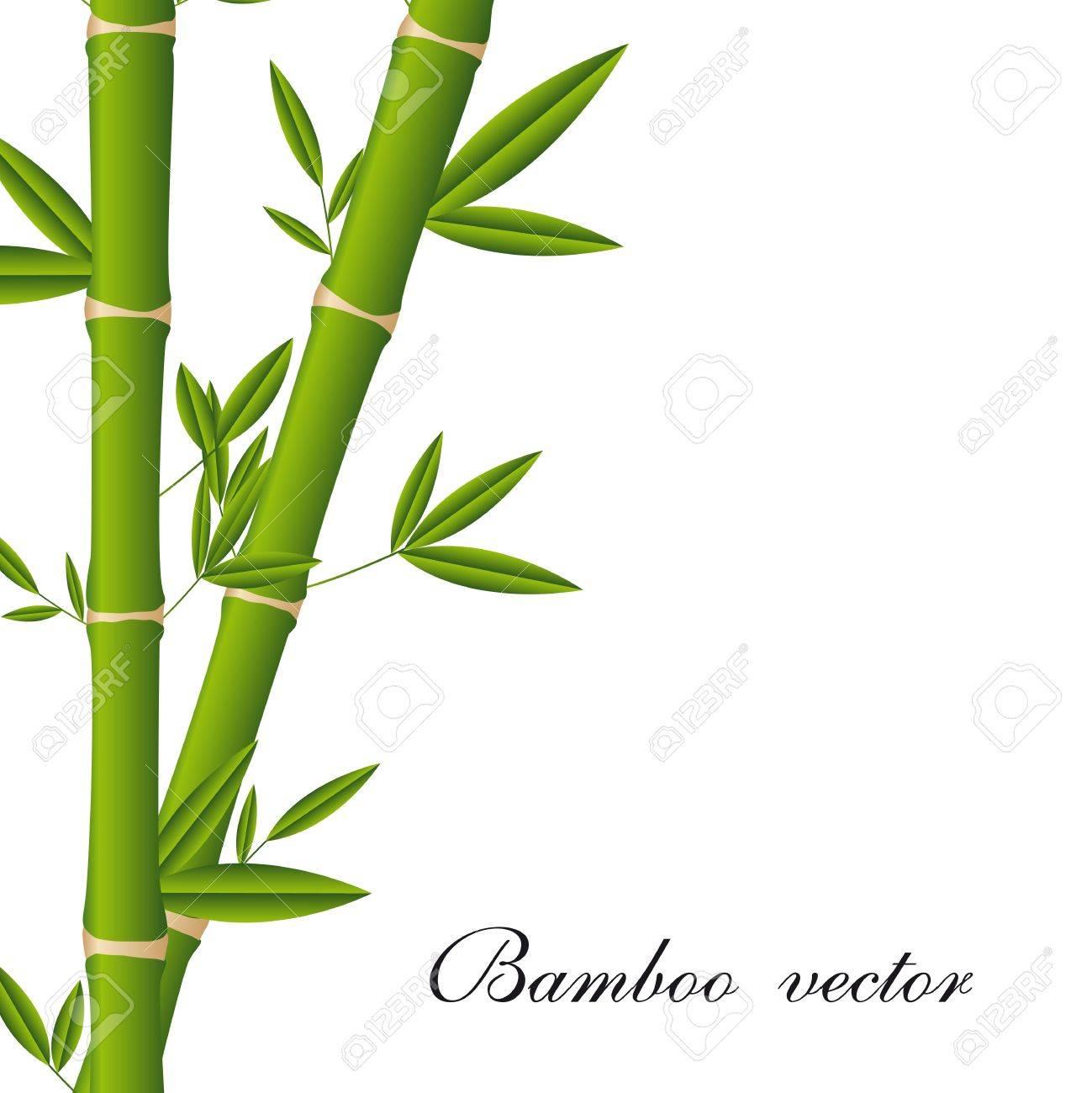 Palos De Bambu Ilustraciones Vectoriales Clip Art Vectorizado Libre - Palos-de-bambu