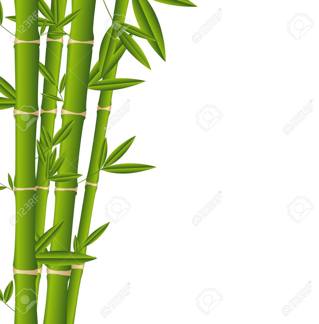 Palos De Bambu Sobre Fondo Blanco Ilustraciones Vectoriales Clip - Palos-de-bambu