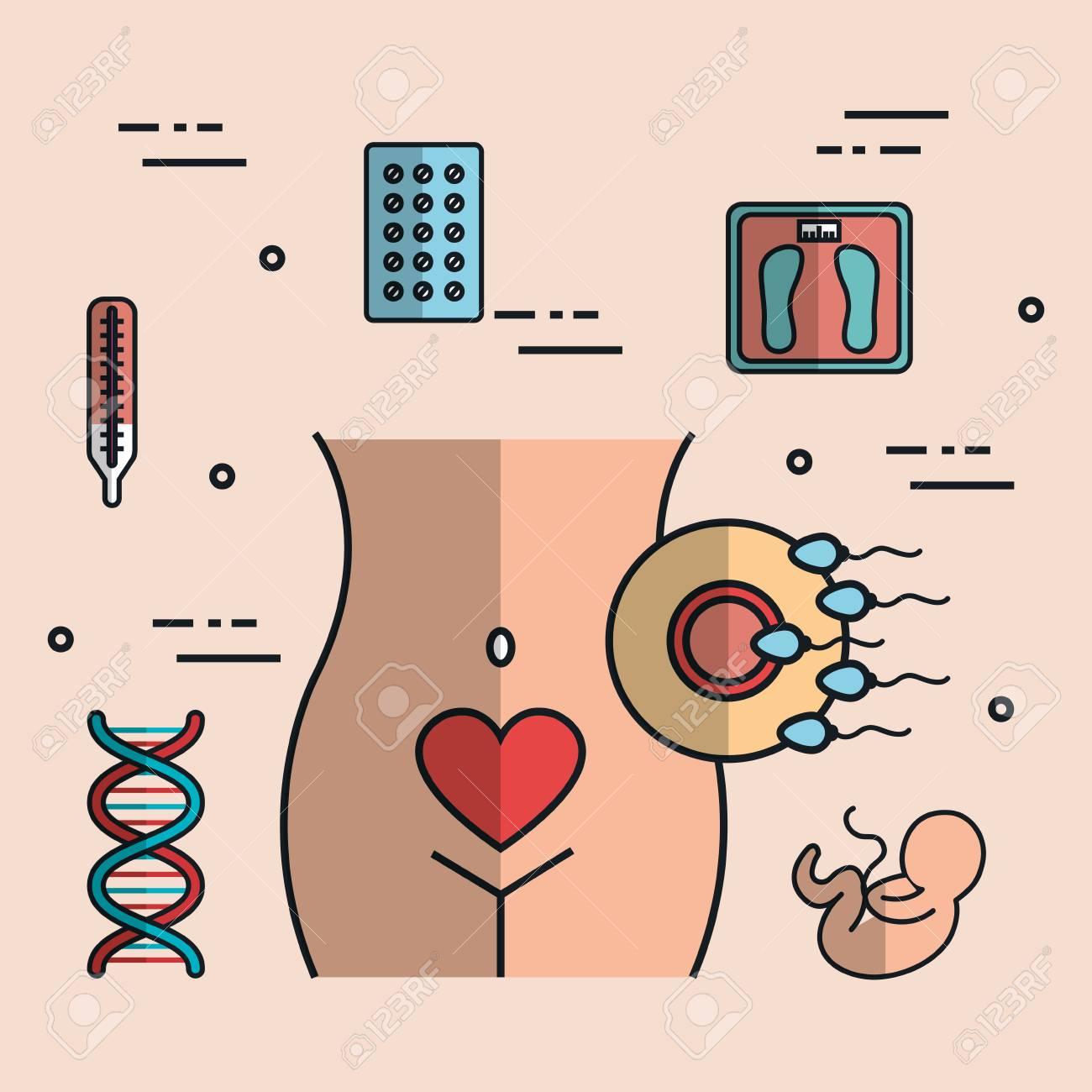 Menschliche Schwangerschaft Mit Der Medizinbehandlung, Zum Der ...
