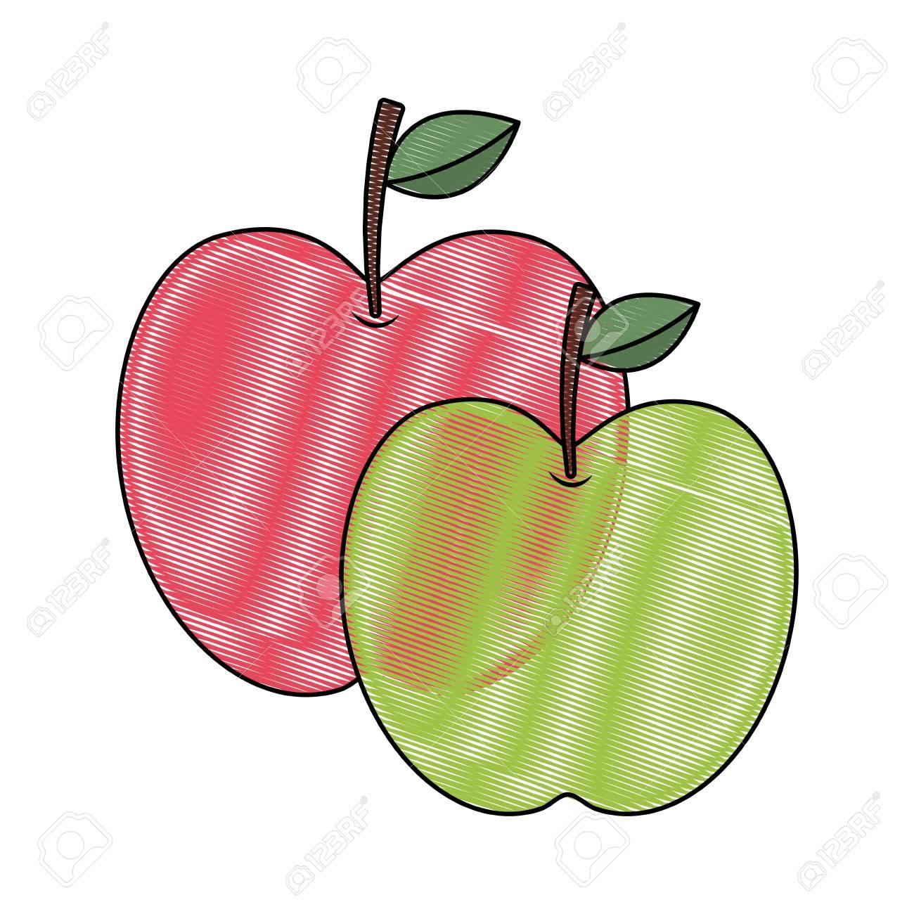 Dos Manzanas Fruta Nutrición Tropical Alimentos Salud Vector Ilustración Dibujo