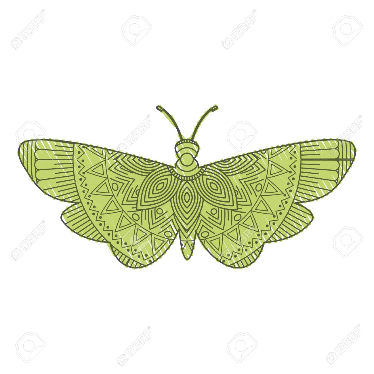 Hand Drawn For Adult Coloring Pages With Moth Bug Vector ...