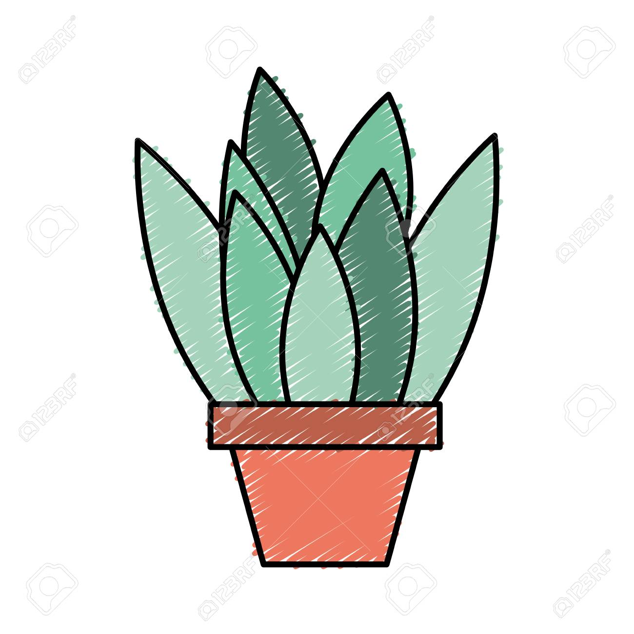 Potted Plant Leaves Interior Decoration Vector Illustration Drawing Royalty Free Cliparts Vectors And Stock Illustration Image 97718320