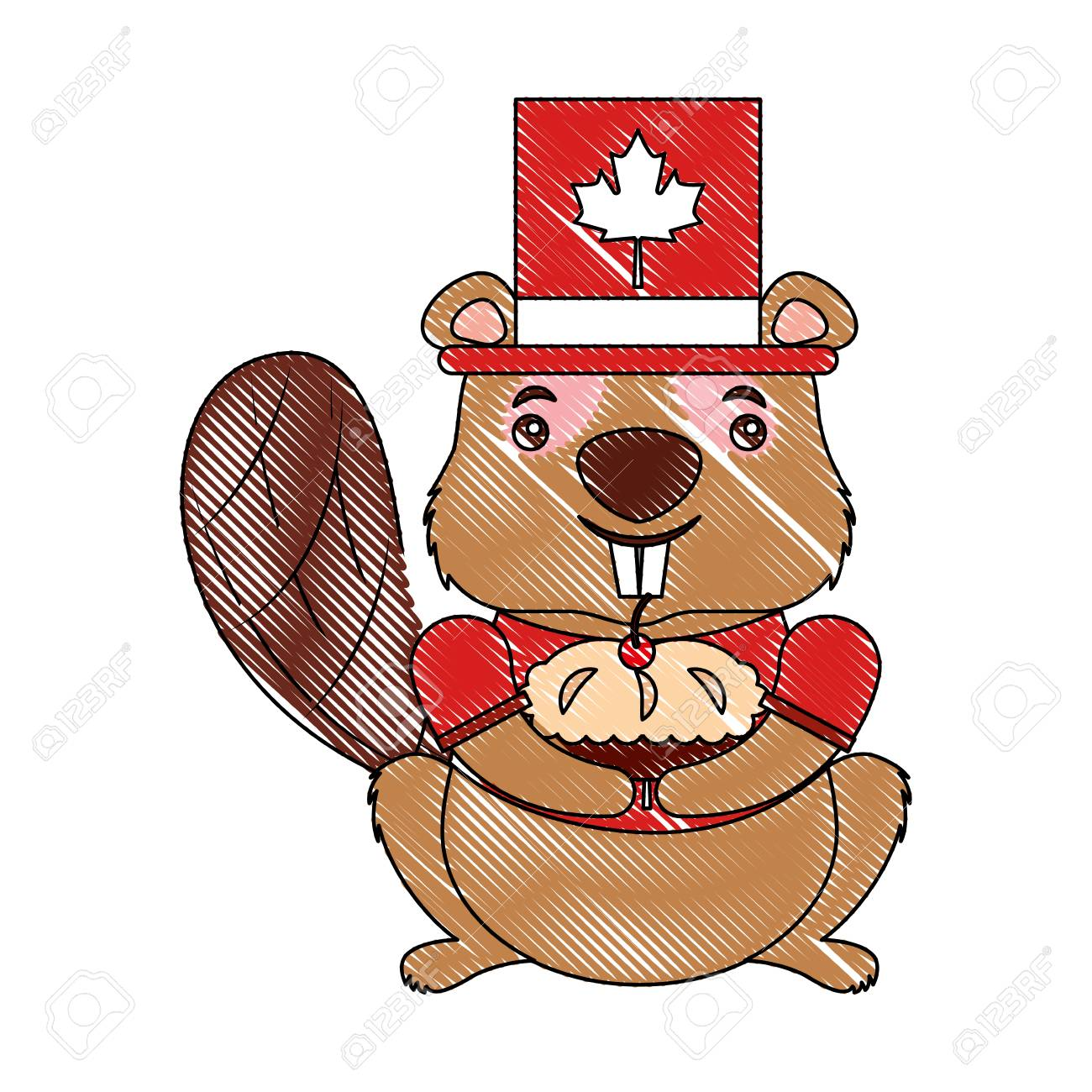 Beaver Of Canada Isolated Icon Vector Illustration Design Royalty ...