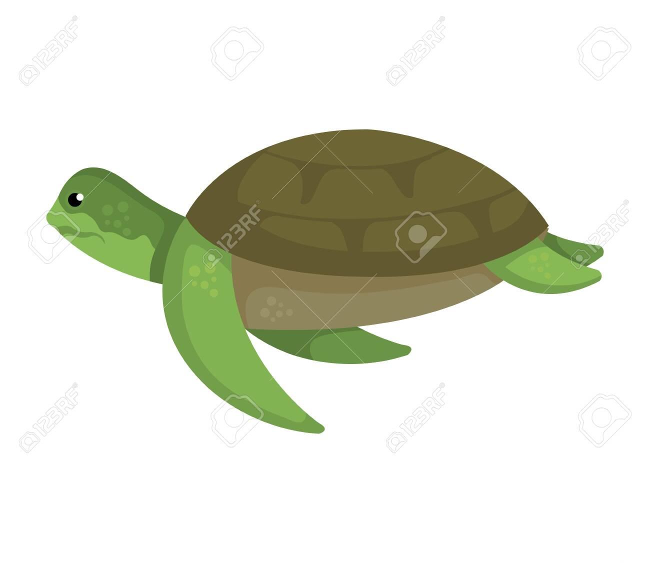 turtle animal nature icon vector illustration design - 124992219