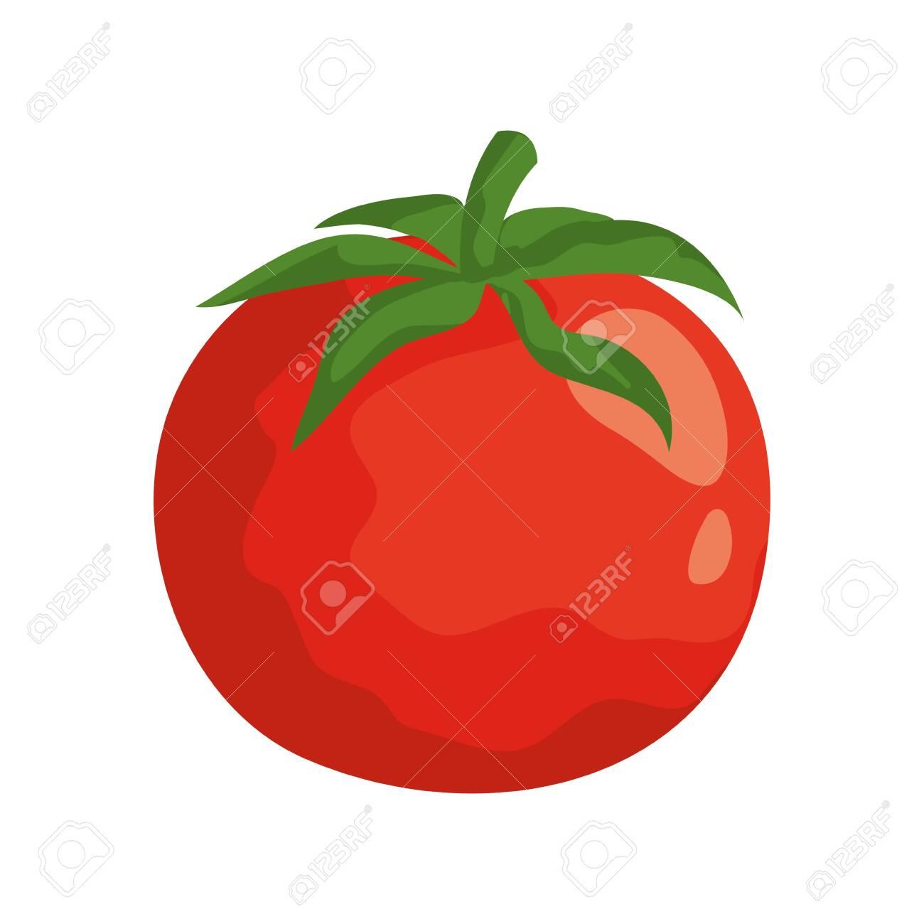 fresh tomato vegetable nature icon vector illustration design - 129508395