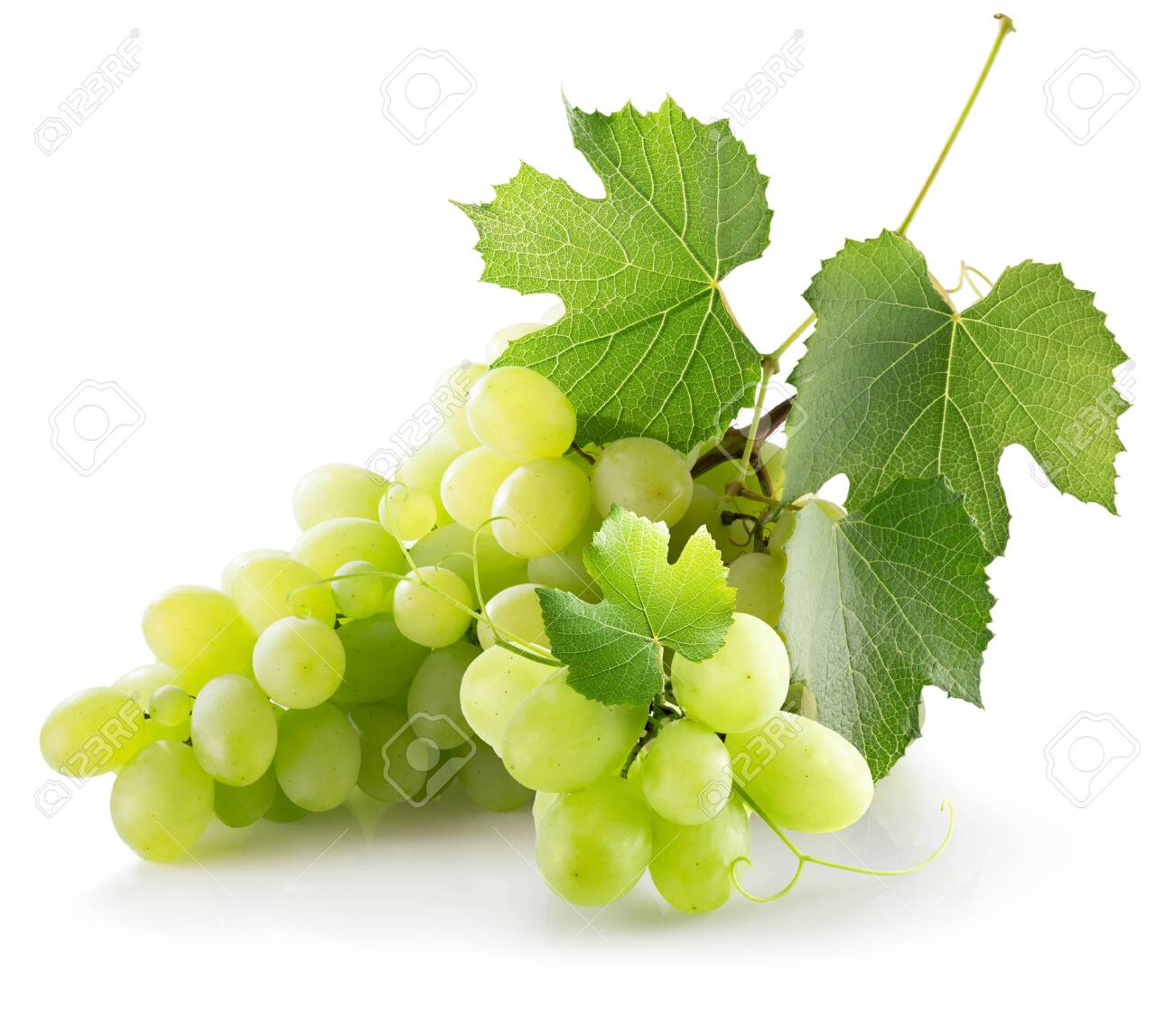green grapes isolated on a white background. - 125008739
