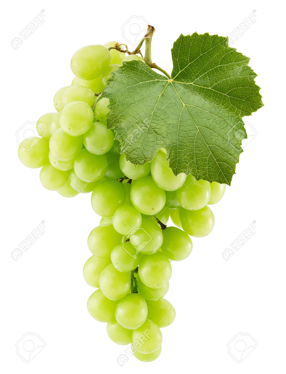 green grapes isolated on a white background. - 167472290