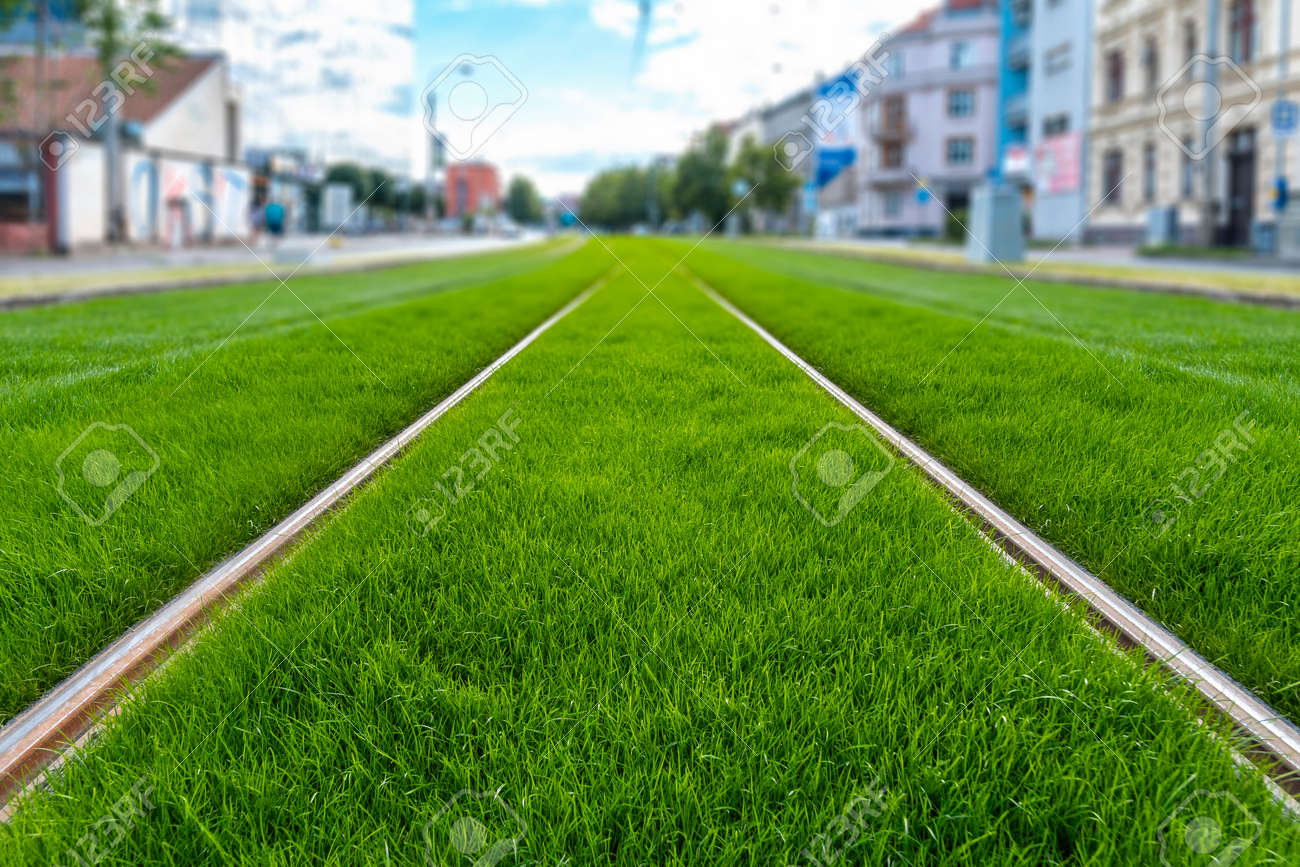 Green track. Grass covered tramway track. Greenery in the city. Habitable zone reduce urban heat. Island effect. - 154799254