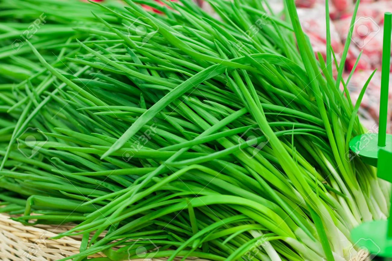 Close up image of bunch of spring onions IN SUPERMARKET Stock Photo - 18299516