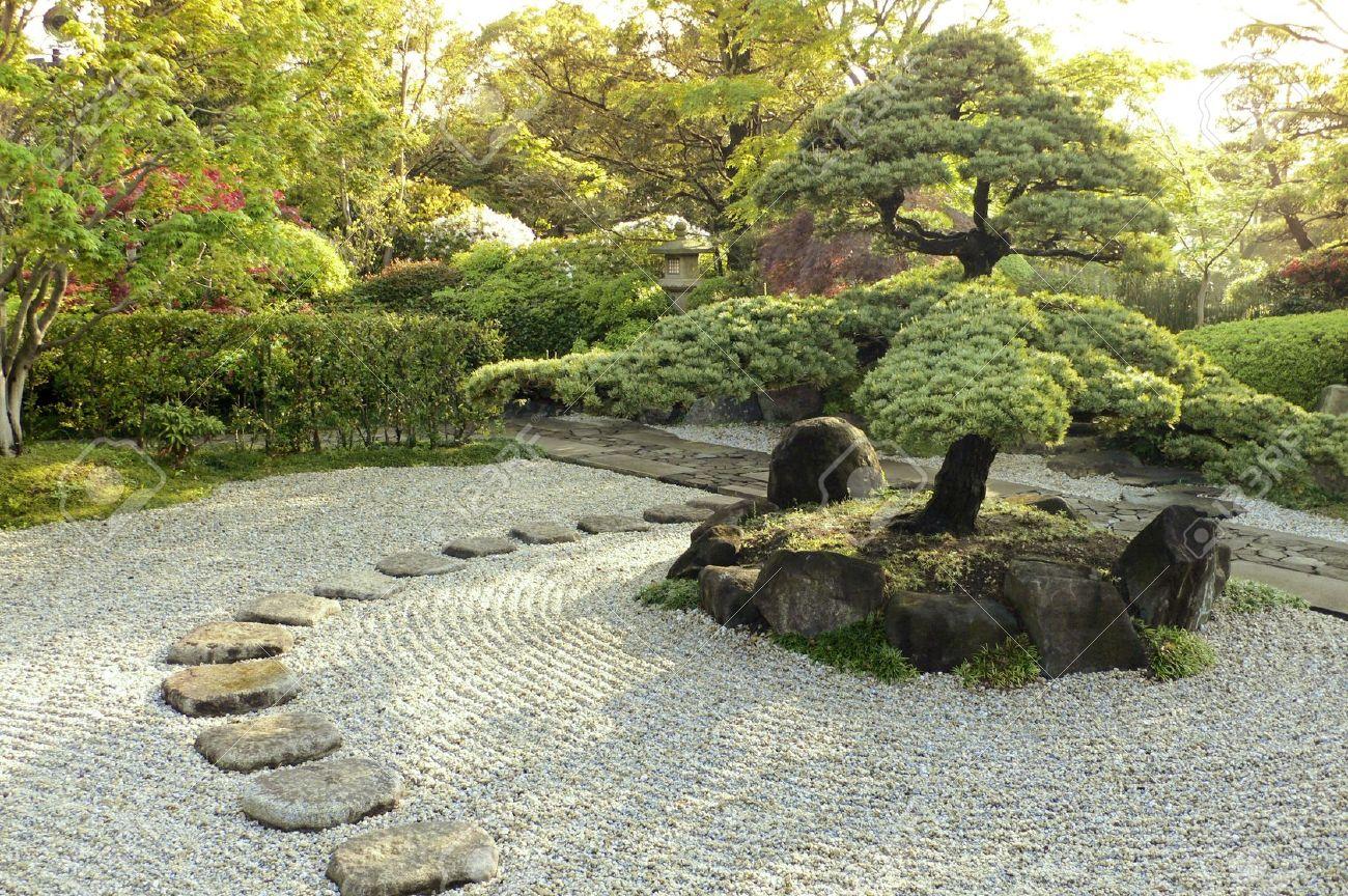 schonen zen garten im sommer morgens standard bild 14843531