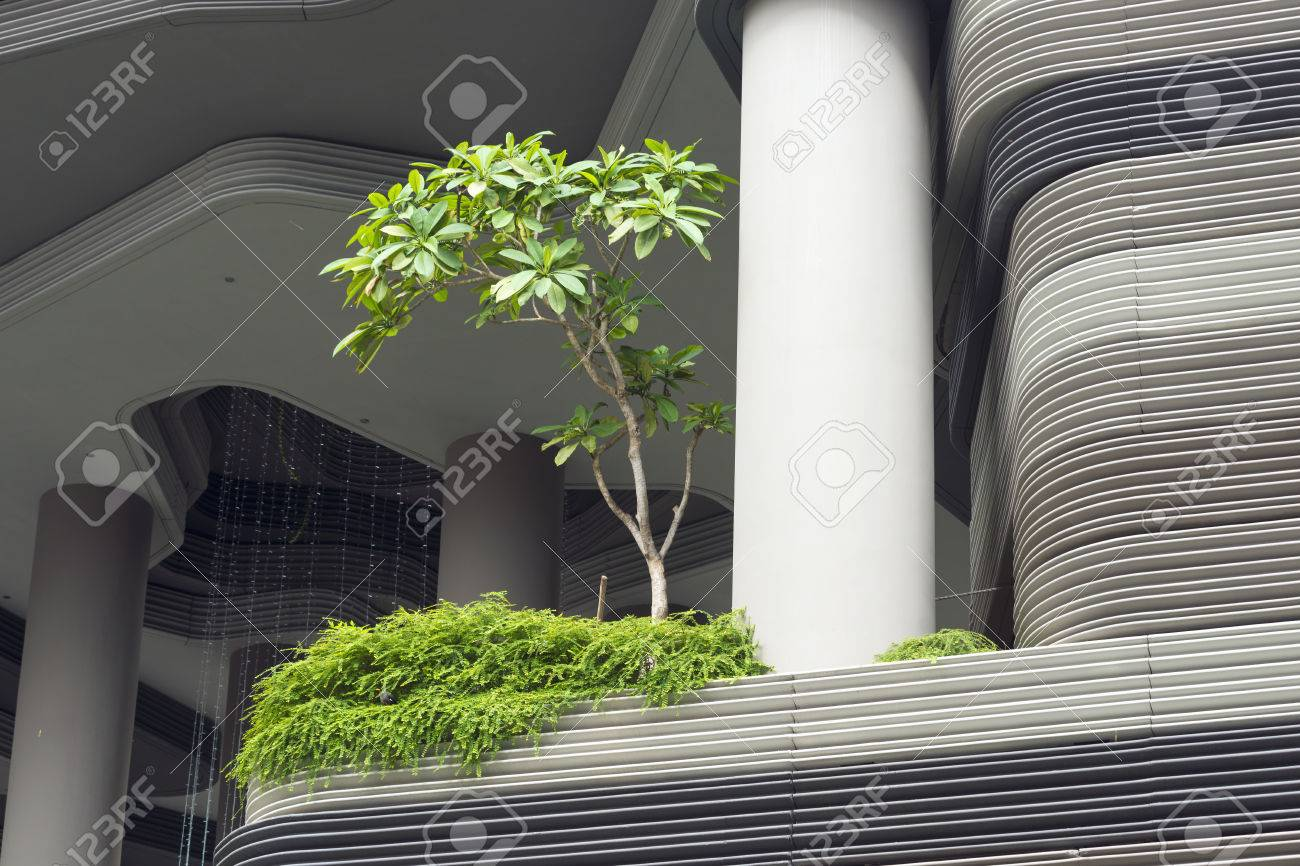 6c0354b787e2 green city tree on balcony terrace of modern building in Singapore Stock  Photo - 59633878